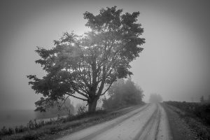 Autumn atmosphere par Charles-Antoine Leblanc