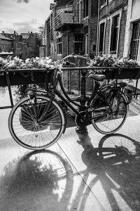 European bike par Suzanne Lucas